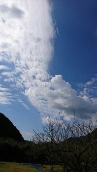 PicsArt_10-18-01.33.11.jpg